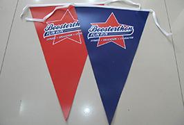 د پرچم کلینر بینر چاپ شوی چې د 1.8m (6 فټ) چاپیریال سالوینټ پرنټر WER-ES1801 2